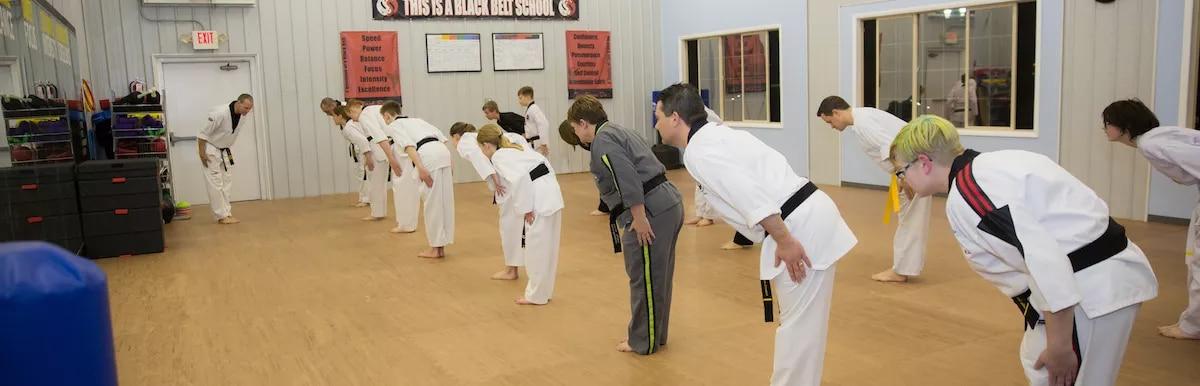 Dover Dragons Tae Kwon Do Adult Taekwondo (13+)