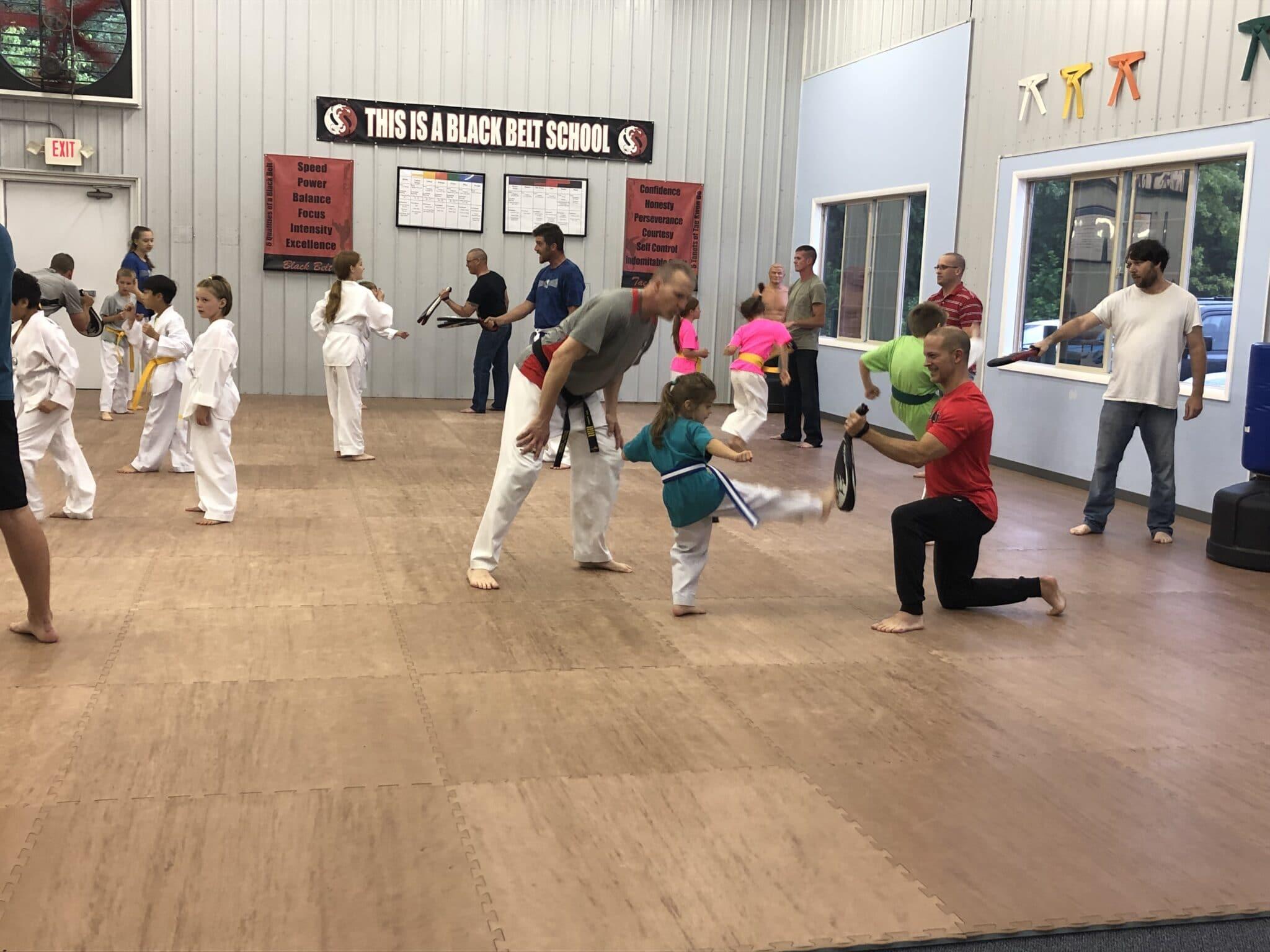 Dover Dragons Tae Kwon Do Programs image
