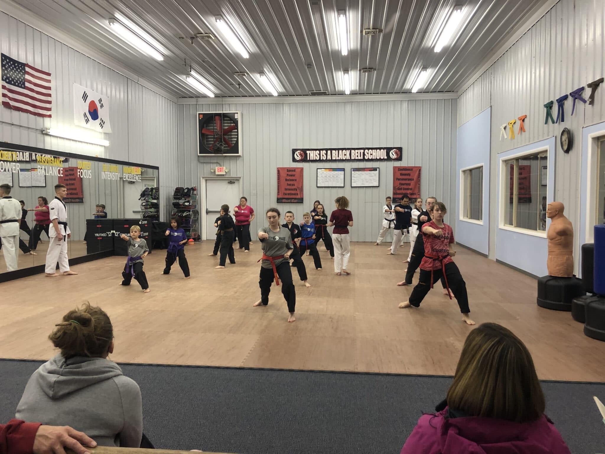 Dover Dragons Tae Kwon Do Kids Taekwondo (Ages 6-12)